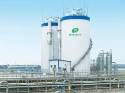 淀粉及淀粉衍生物行业典型业绩