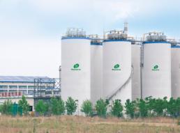 大豆蛋白行业典型业绩